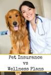 Pet Insurance vs Wellness Plans