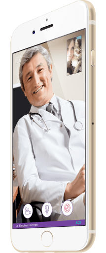 Vet on Demand Means a Veterinarian When You Need One