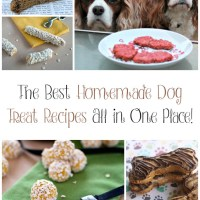 Best Homemade Dog Treat Recipes