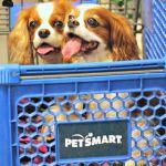 In our PetSmartCart to pick up Natural Balance #PetSmartStory