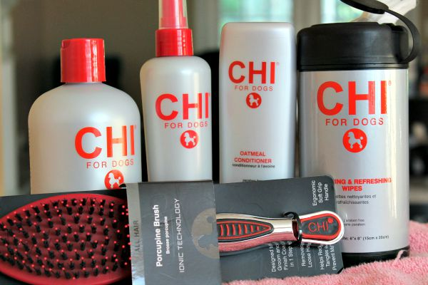 CHI for Dogs Dog Grooming at Home