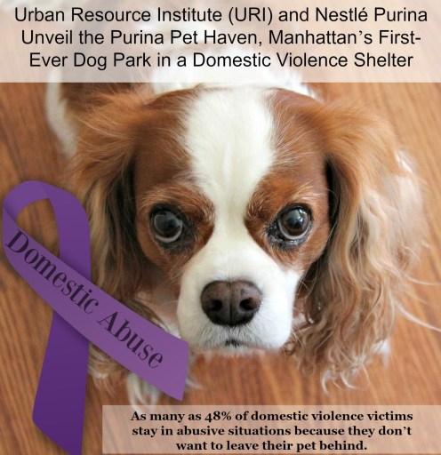 Domestic Abuse Awareness Purina Pet Haven