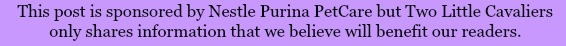 Purina Sponsored Post Disclosure