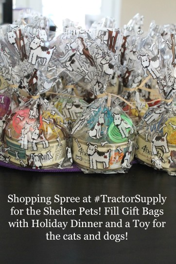 Fill Gift Bags with Holiday Dinner and a Toy for the Cats and Dogs at your Local Shelter #TractorSupply