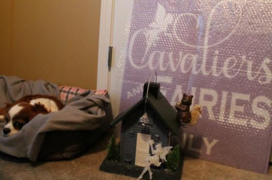 Cavaliers and Fairies