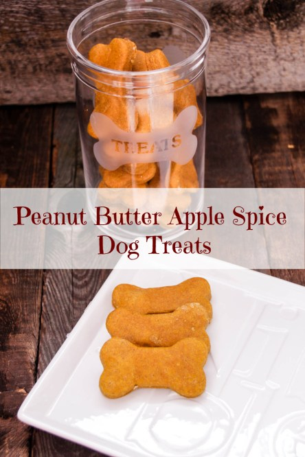 Peanut Butter Apple Spice Dog Treats