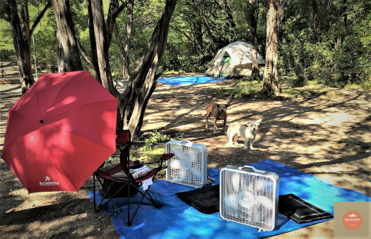 Photo of Cleburne State Park campsite