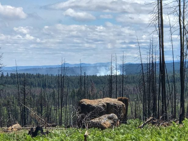 Photo: Smoke from a nearby forest fire