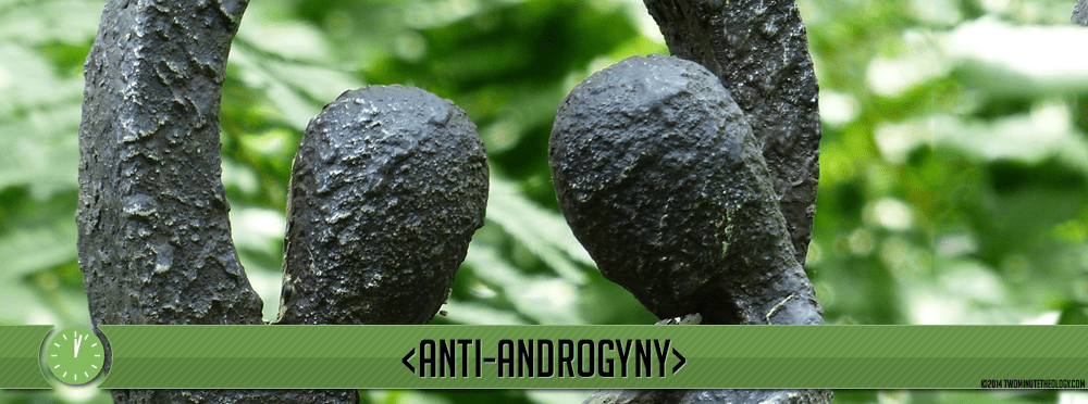 Anti-androgyny: Man and woman are not alike