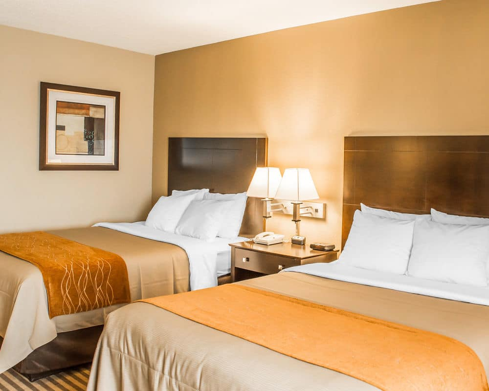 Ultimate List Of Backpacker Hotels Florence Comfort Inn Airport Turfway Road