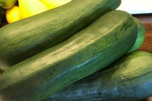 Gardening How-to; Harvest and Prepare Zucchini – EASY
