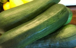 two oaks farm talk, zucchini