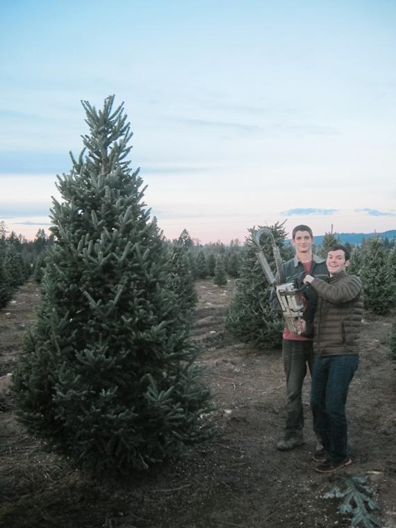 wpid17617-Cutting-Christmas-Trees-on-the-Family-Farm-13.jpg