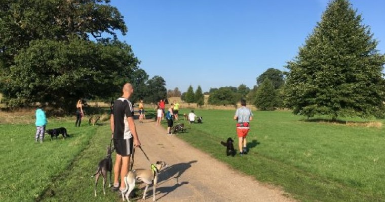 Parkrun with my Dog: Wimpole Estate Review