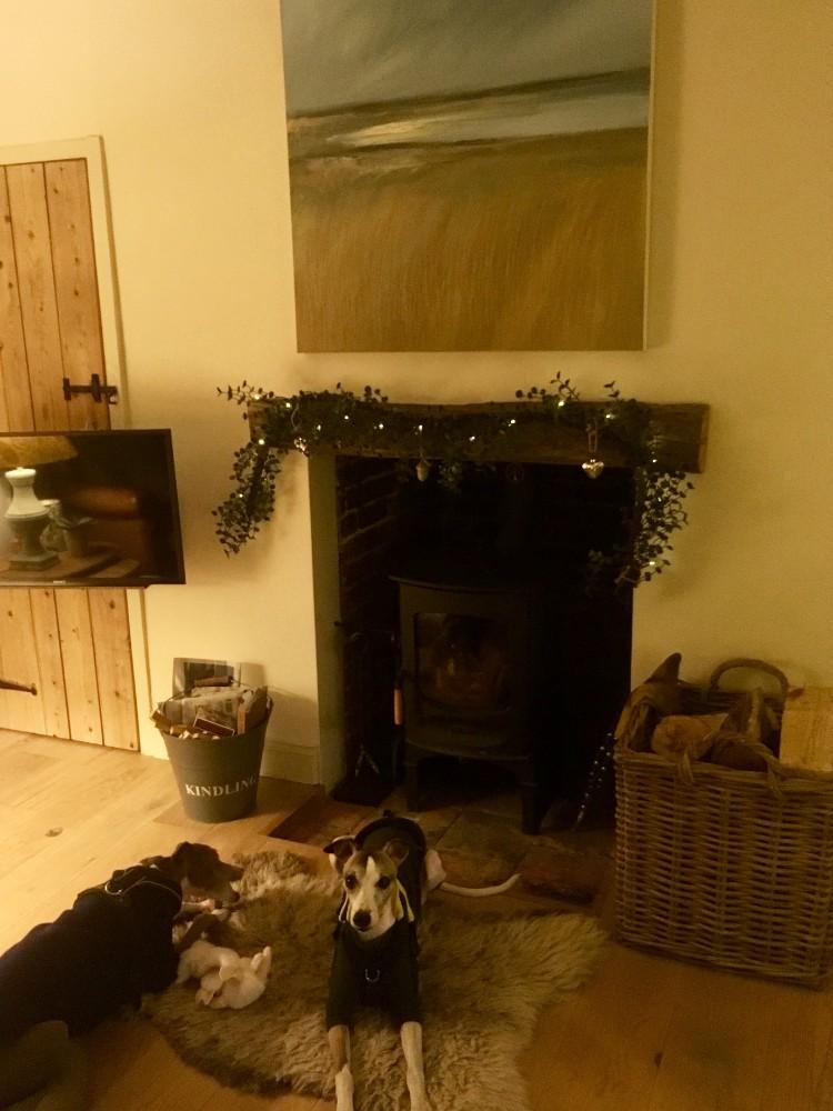 dog friendly cottages Norfolk