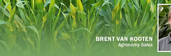 Tar Spot: What to Look For in 2020 by Brent Van Kooten, Agronomy Sales