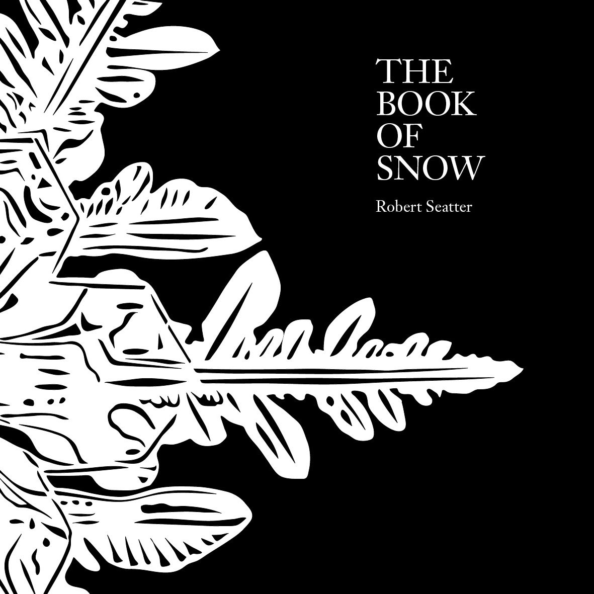 The Book Of Snow Two Rivers Press