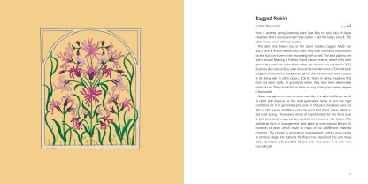 Islamic Art Meets British Flowers p.26-27