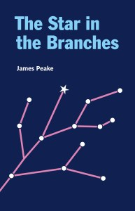 The Star in the Branches book cover