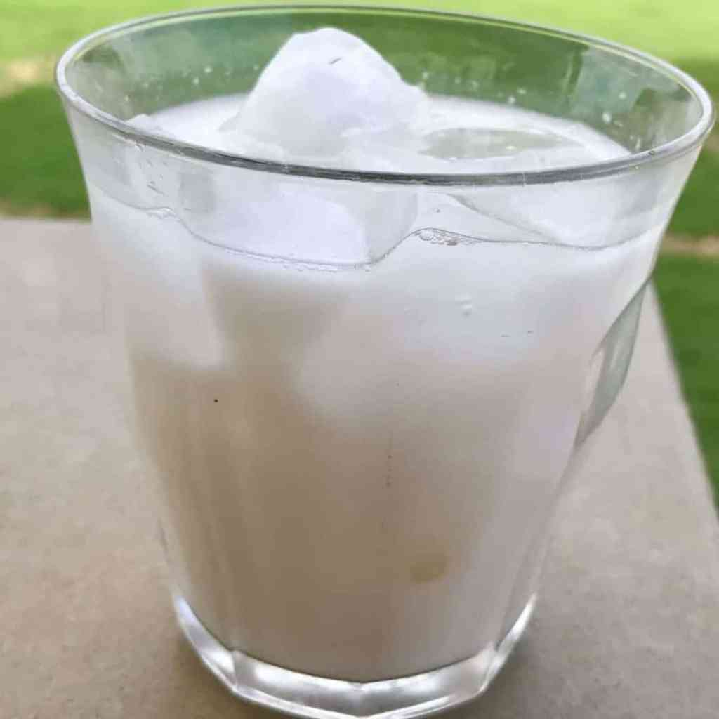 Horchata 1024x1024 - Instant Horchata - https://twosleevers.com