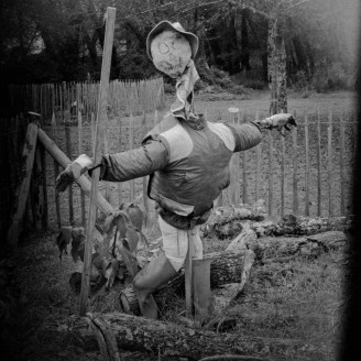 Scarecrow in one of the bio-diversity areas
