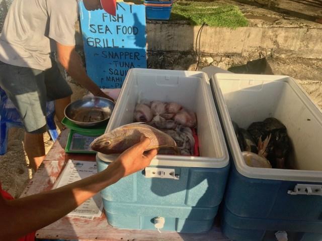 Fish selection at lucky fish