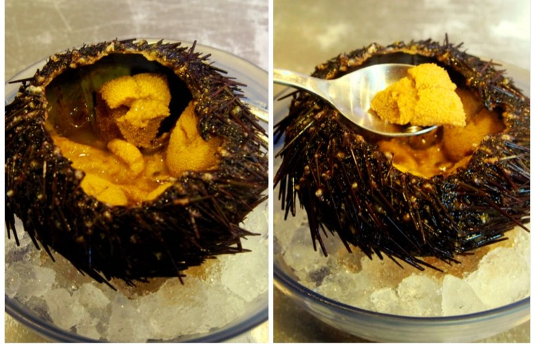 Sushi Airways Uni Sea Urchin