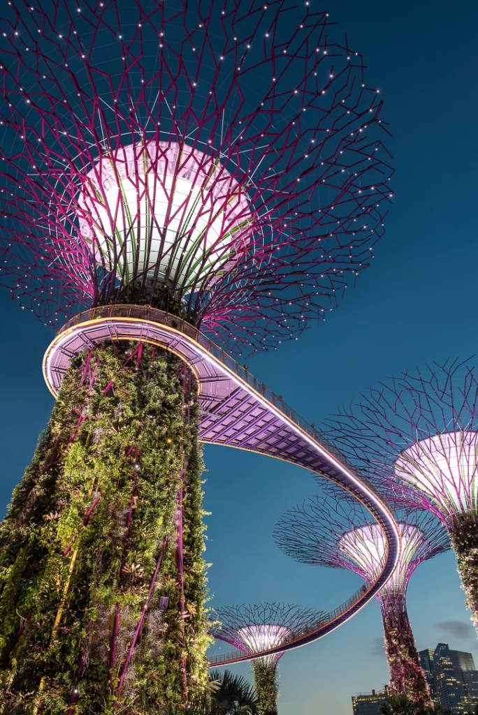 Holiday Singapore Itinerary Travel Tips Gardens by the Bay Supertrees