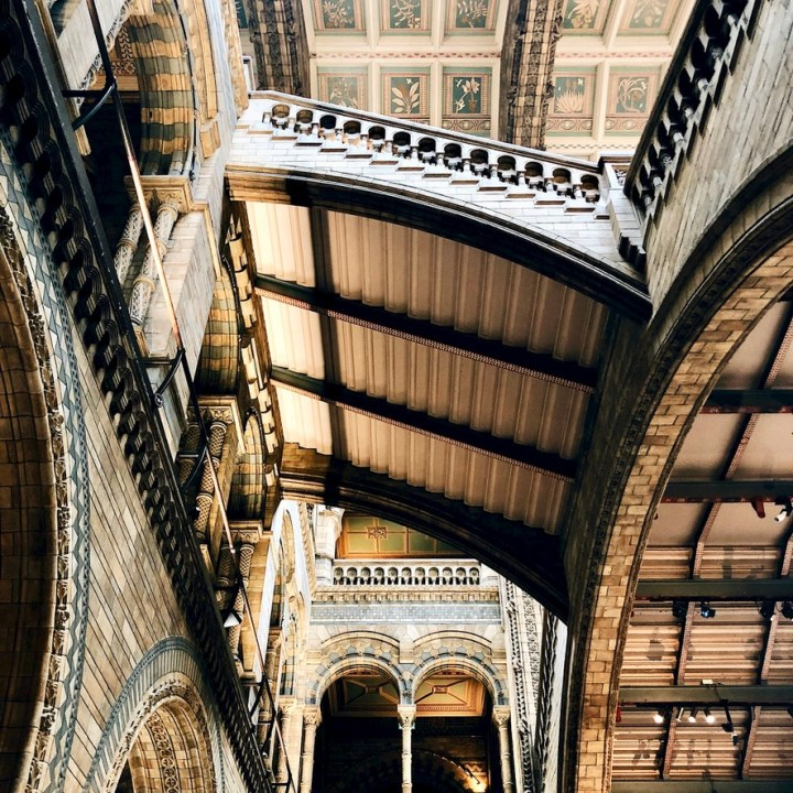 London Day Out Natural History Museum Interior Architecture Itinerary