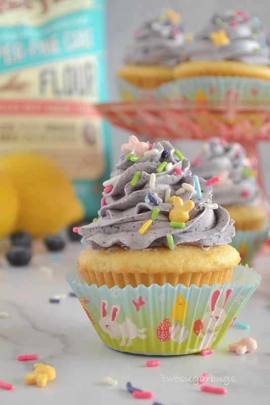 cupcake with sprinkles around it and lemons and blueberries in the background