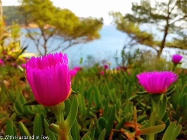 Travel Costa Brava in April