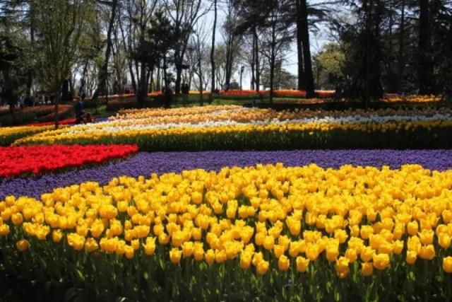 Travel Istanbul in April