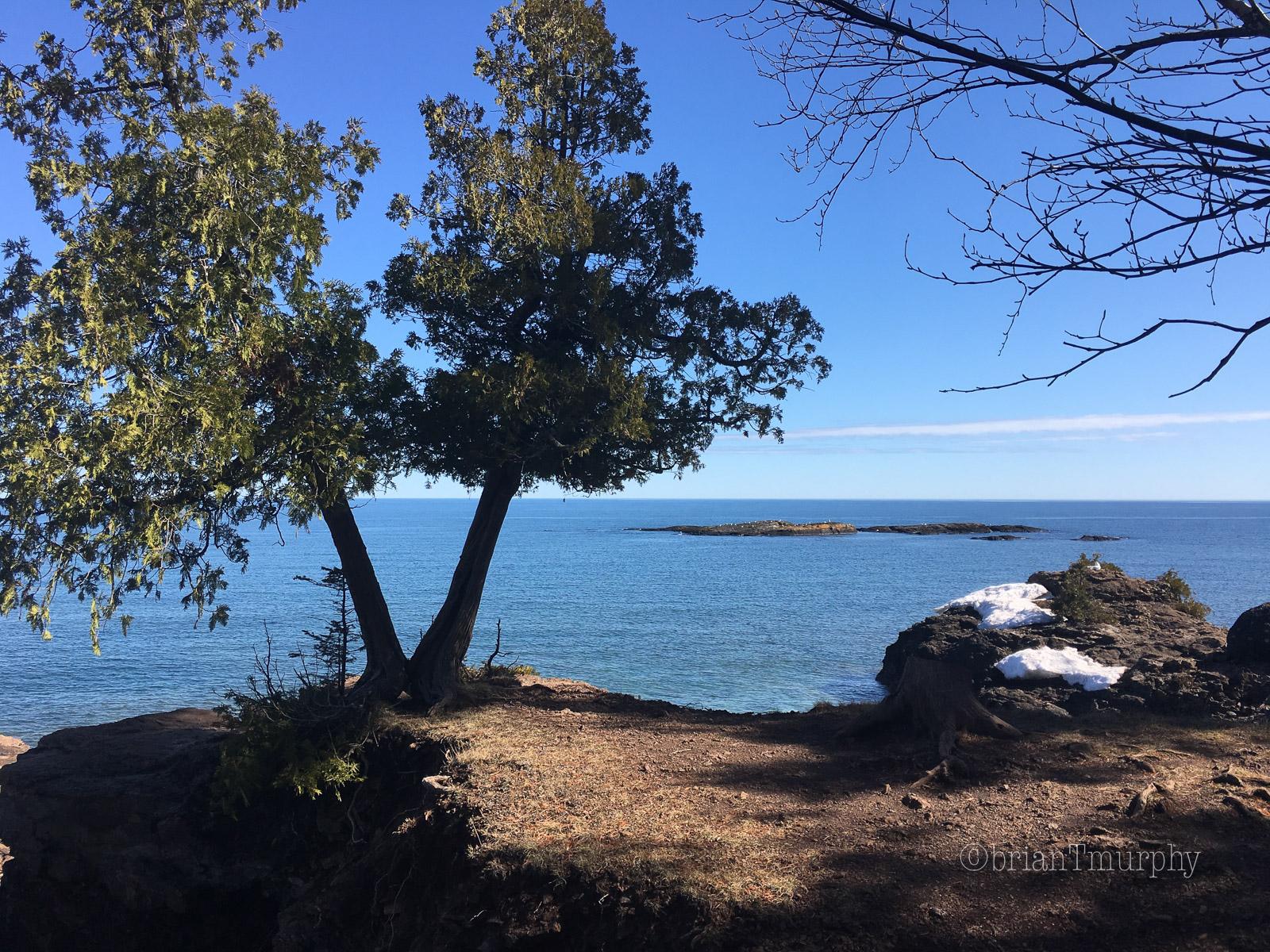 Birding Marquette – The First Week
