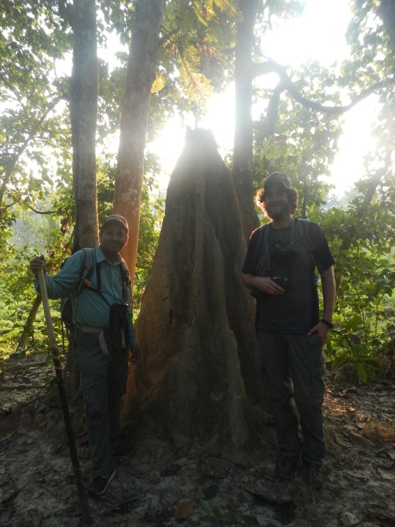 Bishnu and Sean showing the size of a termite mound