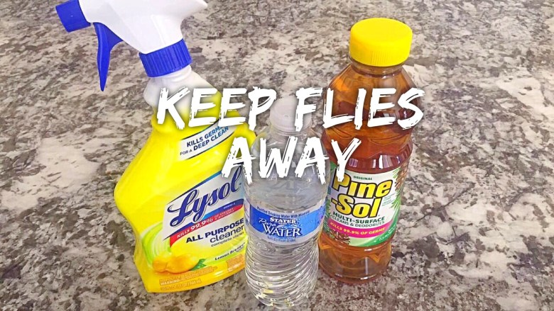 Keep Flies Away!