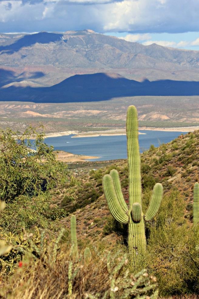 Apache Trail 073
