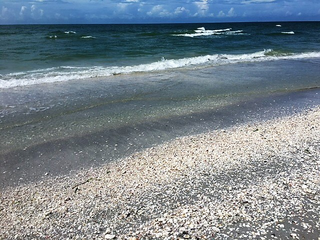 """So many shells on Sanibel Island, sometimes it hurt to walk! - """"The Search for Sanibel Island Shells"""" - Two Traveling Texans"""