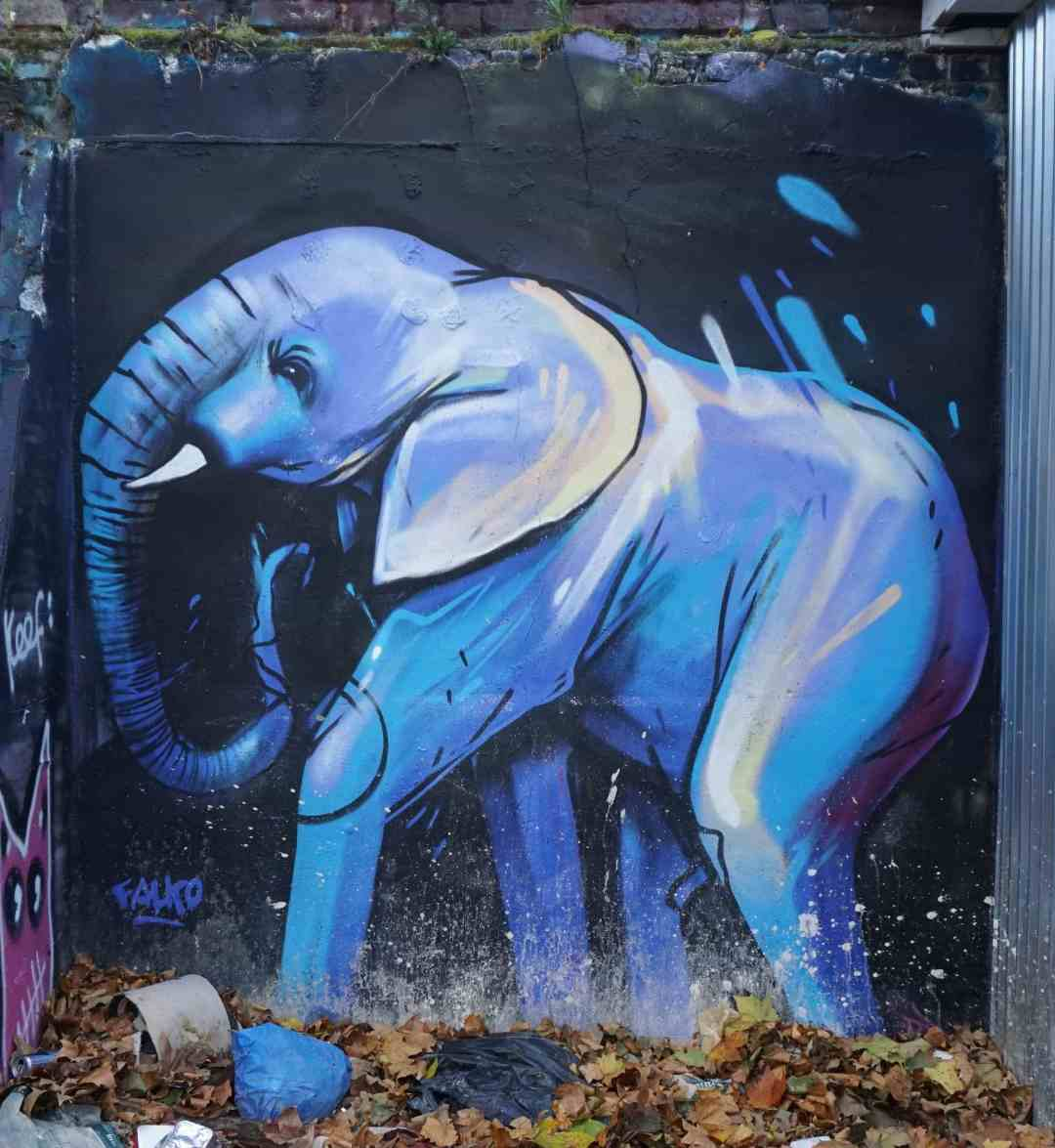 The street artisit, Falko One, loves to paint elephants!