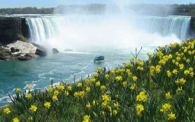 Practical Tips for Visiting Niagara Falls