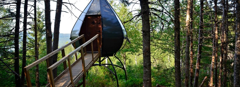 Camping Like Never Before: Terra Nova National Park Oasis