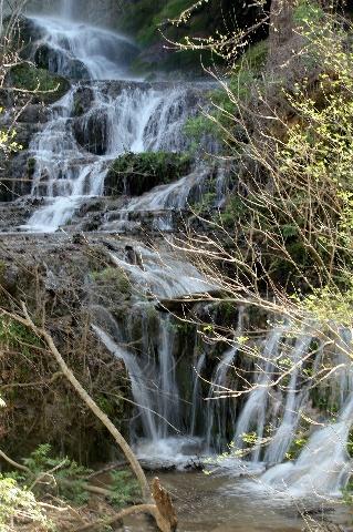 Colorado Bend: beautiful Gorman Falls: Two Worlds Treasures