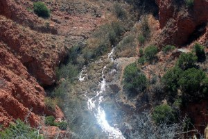 A creek down the Holmes Creek Canyon at Caprock Canyons SP, TX.