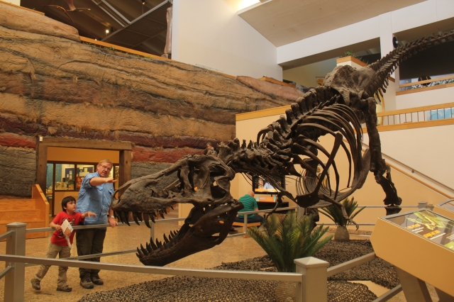 Santa Fe & Albuquerque - New Mexico Museum of Natural History & Science - Two Worlds Treasures