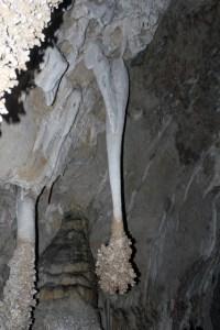 Carlsbad Caverns NP, Big Room tour, lion's tail.