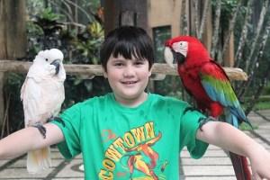 Two Worlds Treasures-visiting bali-10-year-old-boy-bali-bird-park