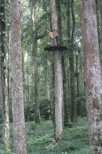Visiting Bali with a 10-year-old boy: Bali TreeTop: ready to zip-line