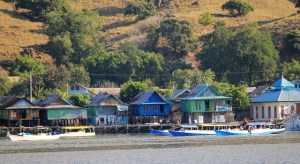 Island Hopping Flores Day 2 - Komodo Village - Two Worlds Treasures