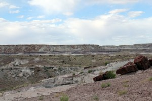 Petrified Forest National Park - Giant Logs Trail - 1 - Two Worlds Treasures