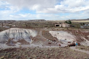 Petrified Forest National Park - Giant Logs Trail - 2 - Two Worlds Treasures