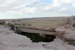 Petrified Forest National Park - Agate Bridge - Two Worlds Treasures